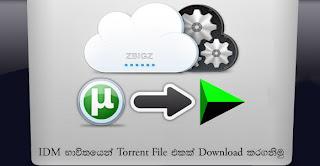 සීඩ් අඩු Torrent එකක් පටස්ගාලා Download කරගමු