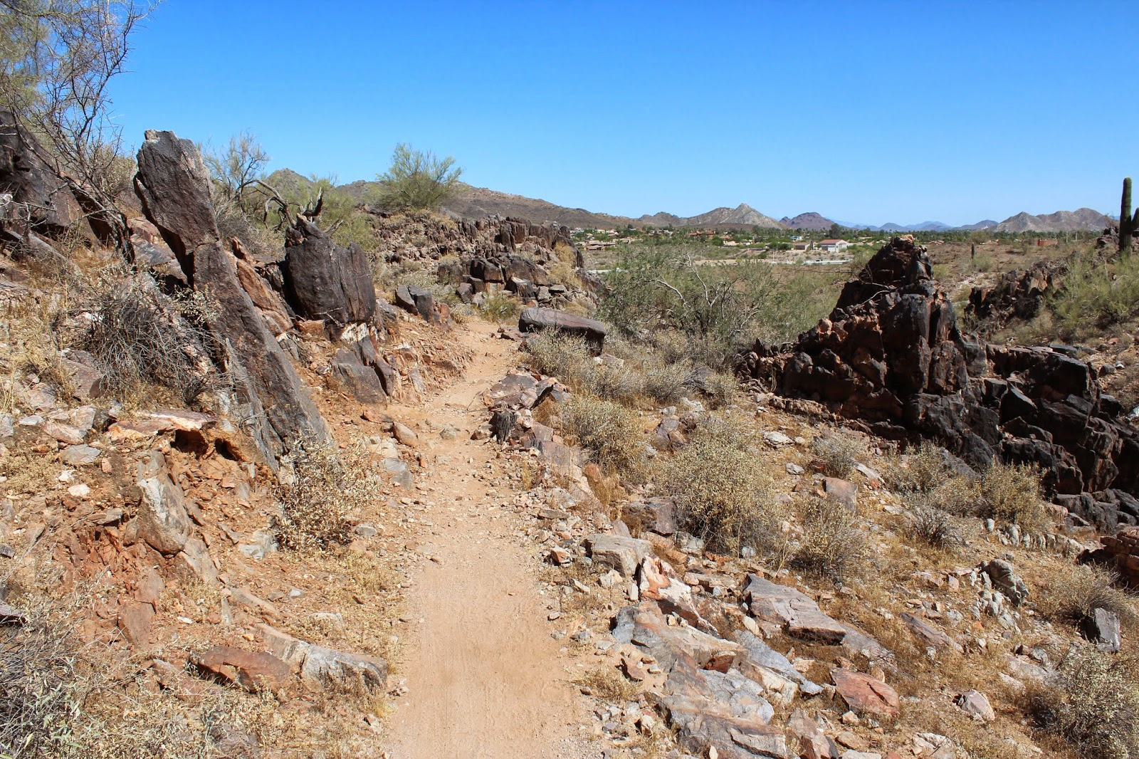 Gjhikes Com Dreamy Draw Nature Trail