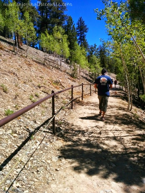 Upper Bristlecone Trail, Mt Charleston