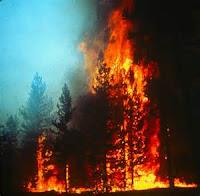Kyburz Fire still burning near Hwy. 50