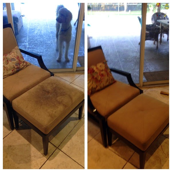 ... Cleaning All Types Of Upholstery, Suede, Microfiber And Leather  Furniture In Surfside Fl, Bal Harbour, North Shore Miami Beach, Aventura,  Normany Isles ...