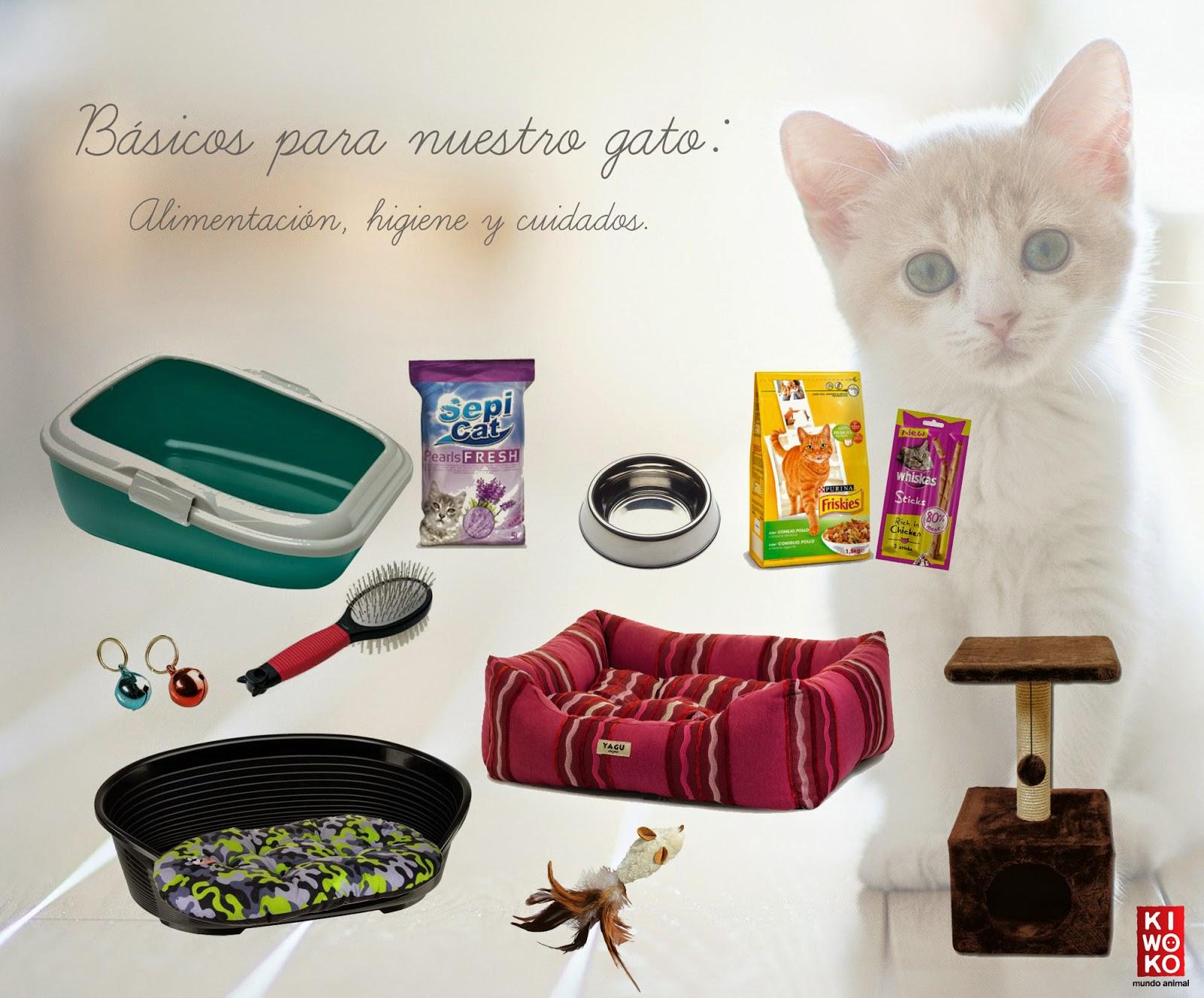 Productos gato
