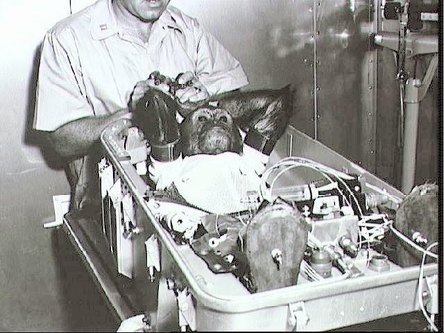chimpancé Enos en Mercury 5