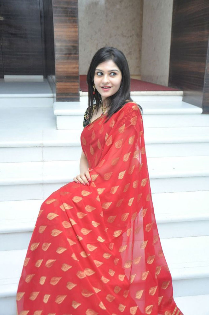 Vibha Natarajan saree photos