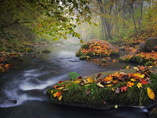 Autumn Landscape, Photograph by Olegas Kurasovas