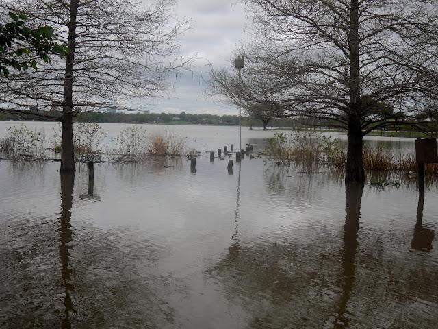 Heavy rains lead to flooding at White Rock Lake, Dallas, Texas.