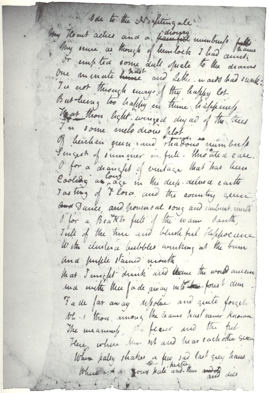 Ode to a nightingale essay
