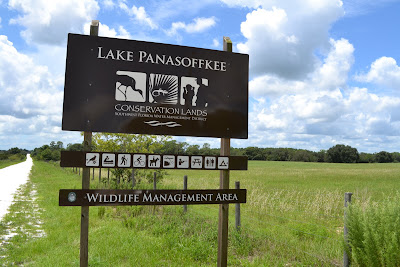 Florida: Lake Panasoffkee Conservation Lands, SW FL Water Management District, WMA