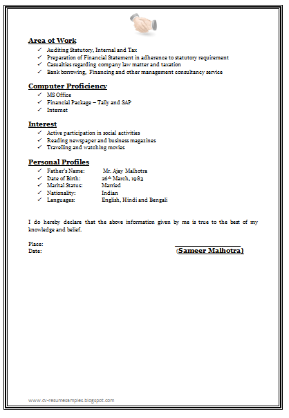 Cv examples with no experience