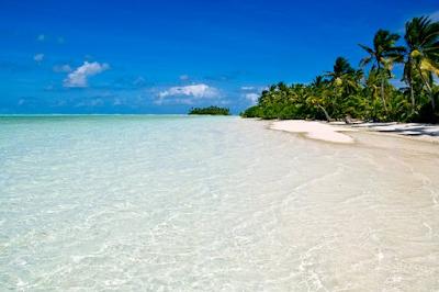 Spiaggia bianchissima sull'isola di Prison