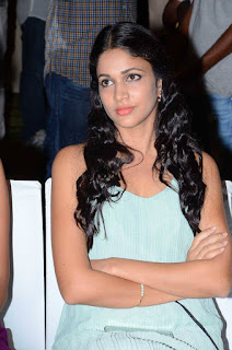 Actress Lavanya Tripathi Pictures at Bale Bale Magadivoy Success Meet 25287)