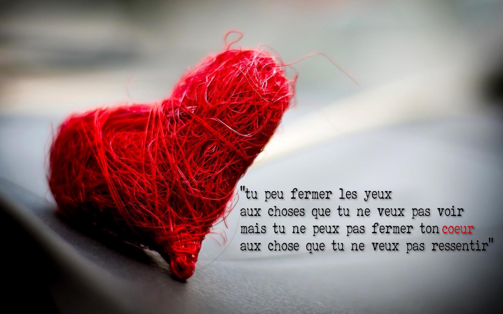 citation amour sentiments