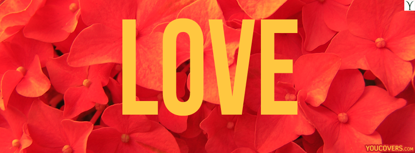 Oneimiratespot love cover photos for facebook love fb love cover photos for facebook love fb covers photo for timeline love beautiful red flowers pictures altavistaventures Images