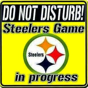 Do Not Disturb Steelers Game In Progress