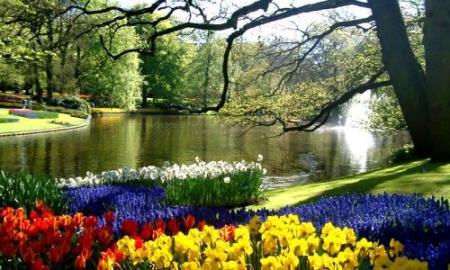 Todo informacion paisajes hermosos naturales for Jardines naturales