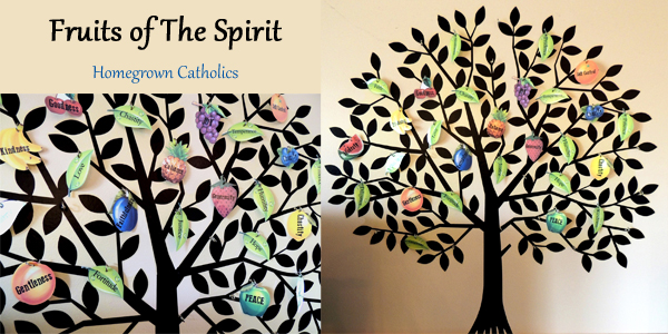 The 12 Fruits of the Holy Spirit