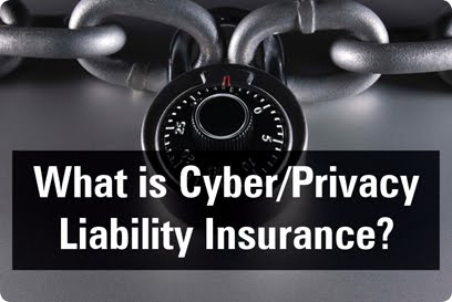 cyber theft, insurance, privacy,