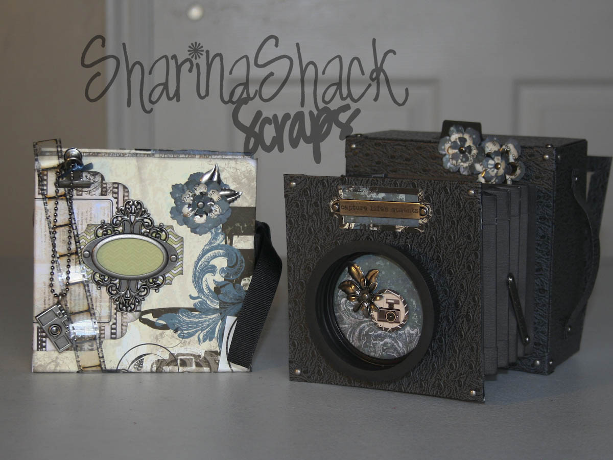 Sharinashackscraps My Vintage Camera And Mini Sneak Peak Electronics Projects For Dummies A