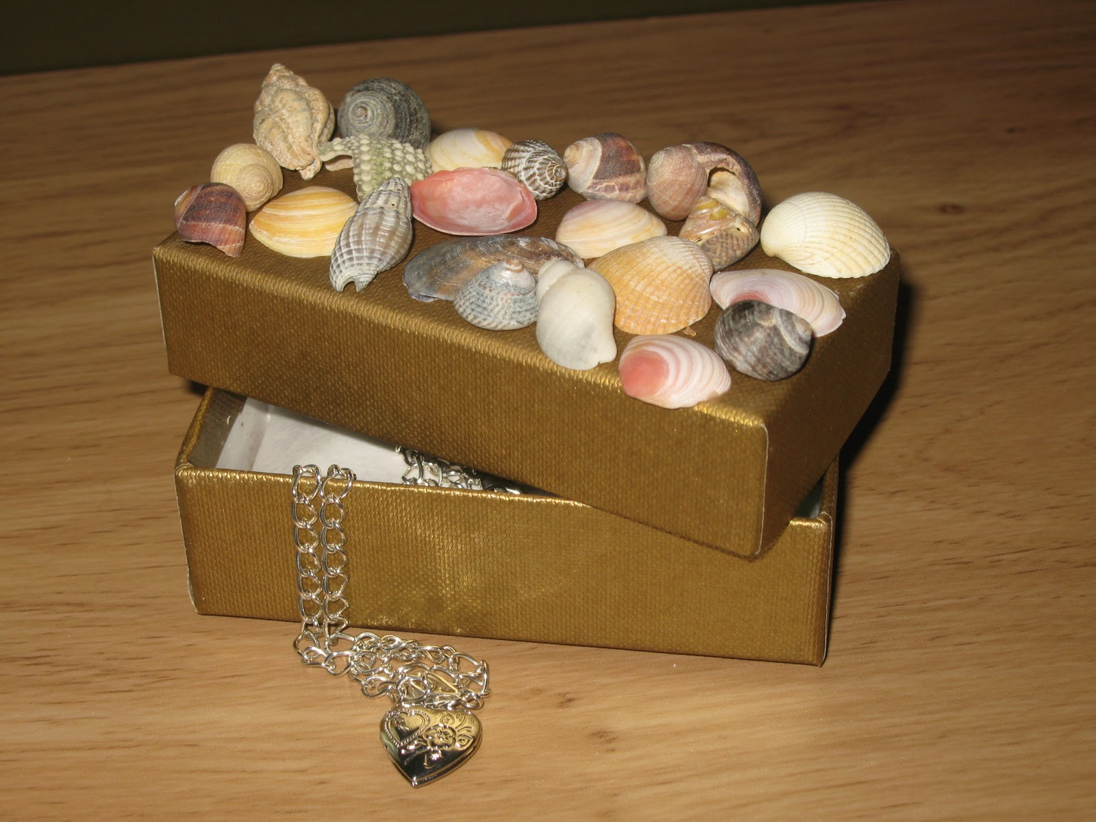 Me and my shadow sea shell collecting and crafting for Seashell crafts for adults