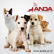 ANDA- Agencia de Noticia de Direitos de Animais