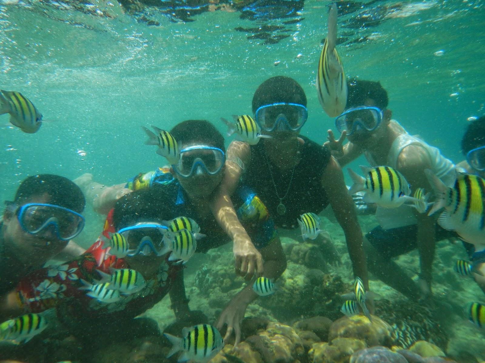 Snorkeling, Menyelam di Pantai/Tempat Wisata di Bali