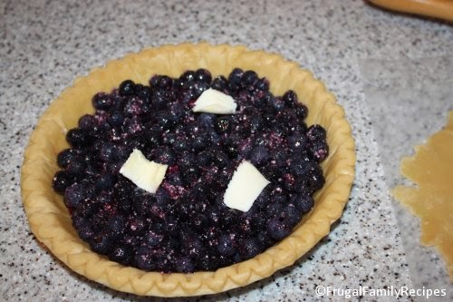 blueberries in pie crust