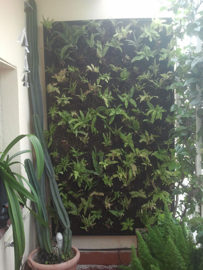 Jardines verticales y cubiertas vegetales abril 2013 for Riego jardin vertical