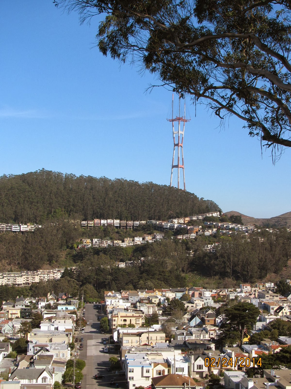 Grand View Park- Sutro Tower to the Right