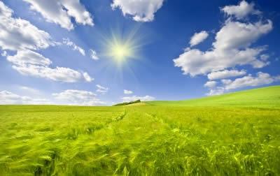 optimismo y exito cual es su relacion
