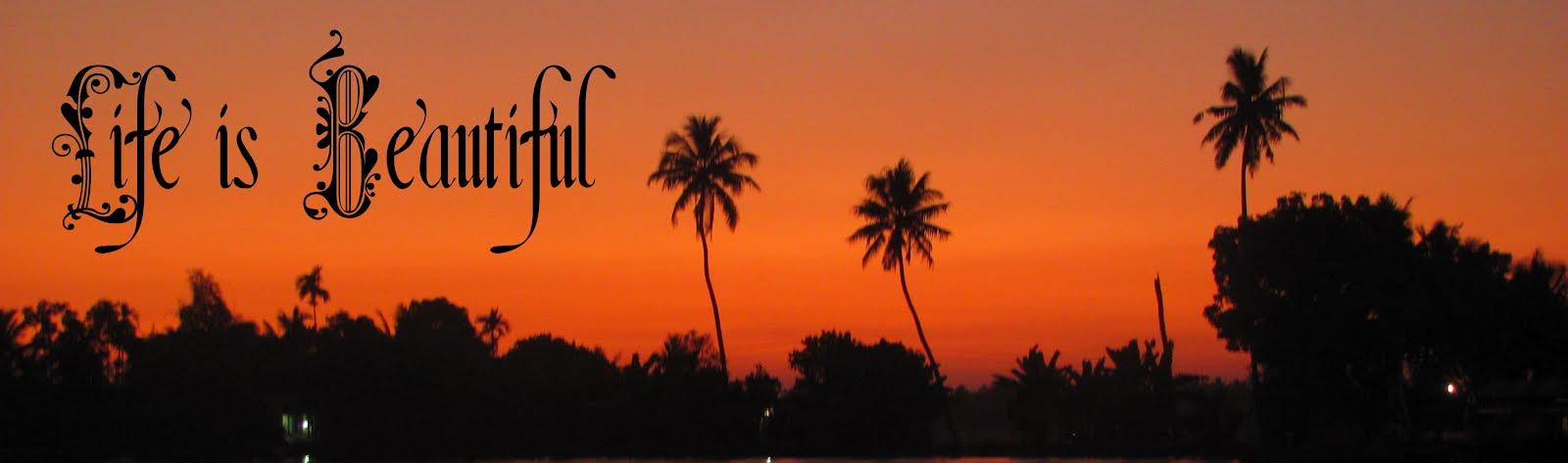 Life is Beautiful!