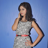 Ruby Parihar Photos in Short Dress at Premalo ABC Movie Audio Launch Function 27