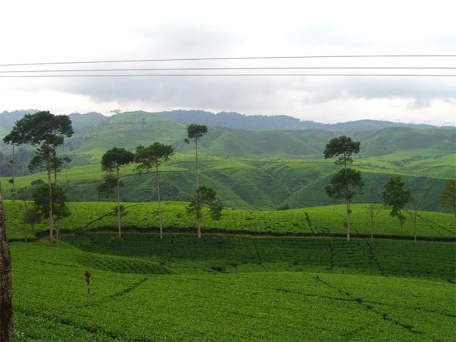 Lukisan Pemandangan Indah di Desa atau Kampung
