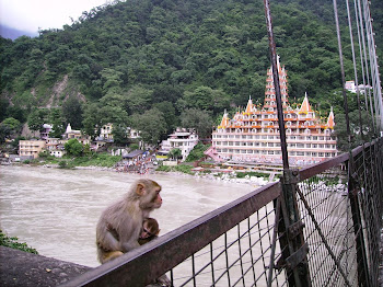 Shri Ram Jhoola Bridge