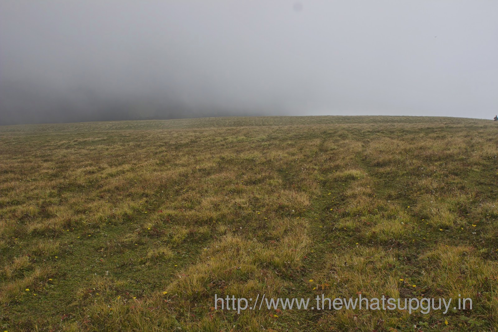 Meadows-Roopkund-Trek-With-India-Hikes-Day-2