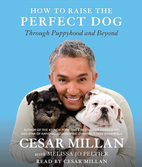 Malka Out Of The Closet Cesar Millan The Dog Whisperer