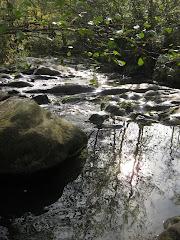 """""""Que no se sequen tus lágrimas, porque se secarán los ríos de tu alma."""".."""
