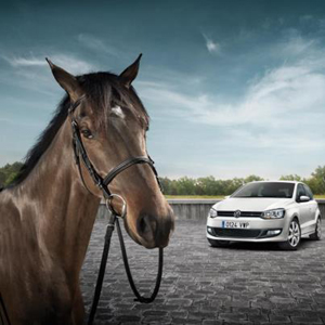Volkwagen Polo y un caballo