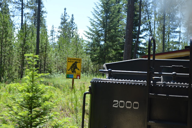 Hunting for Bigfoot