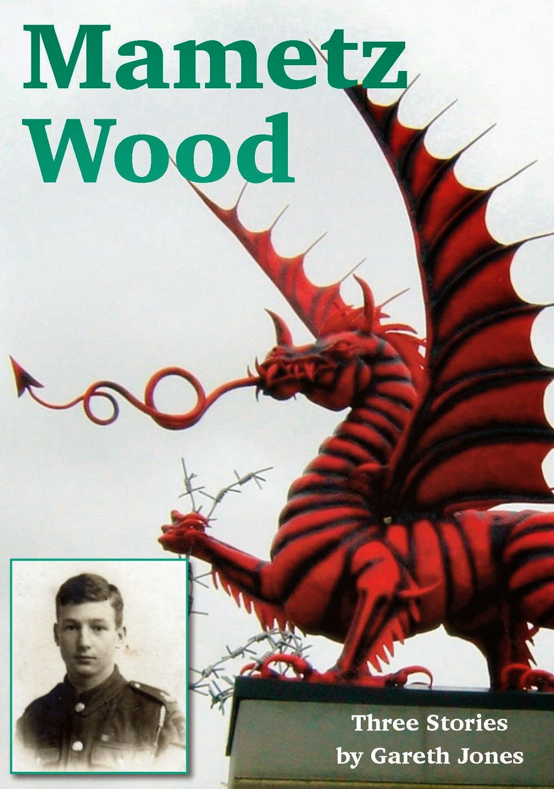 mametz woods • 'mametz wood' was featured as the saturday poem in the guardian in 2005 and is included in sheers' second collection of poetry, skirrid hill skirrid derives from a word meaning divorce or separation and many of the poems in the collection are concerned with loss.