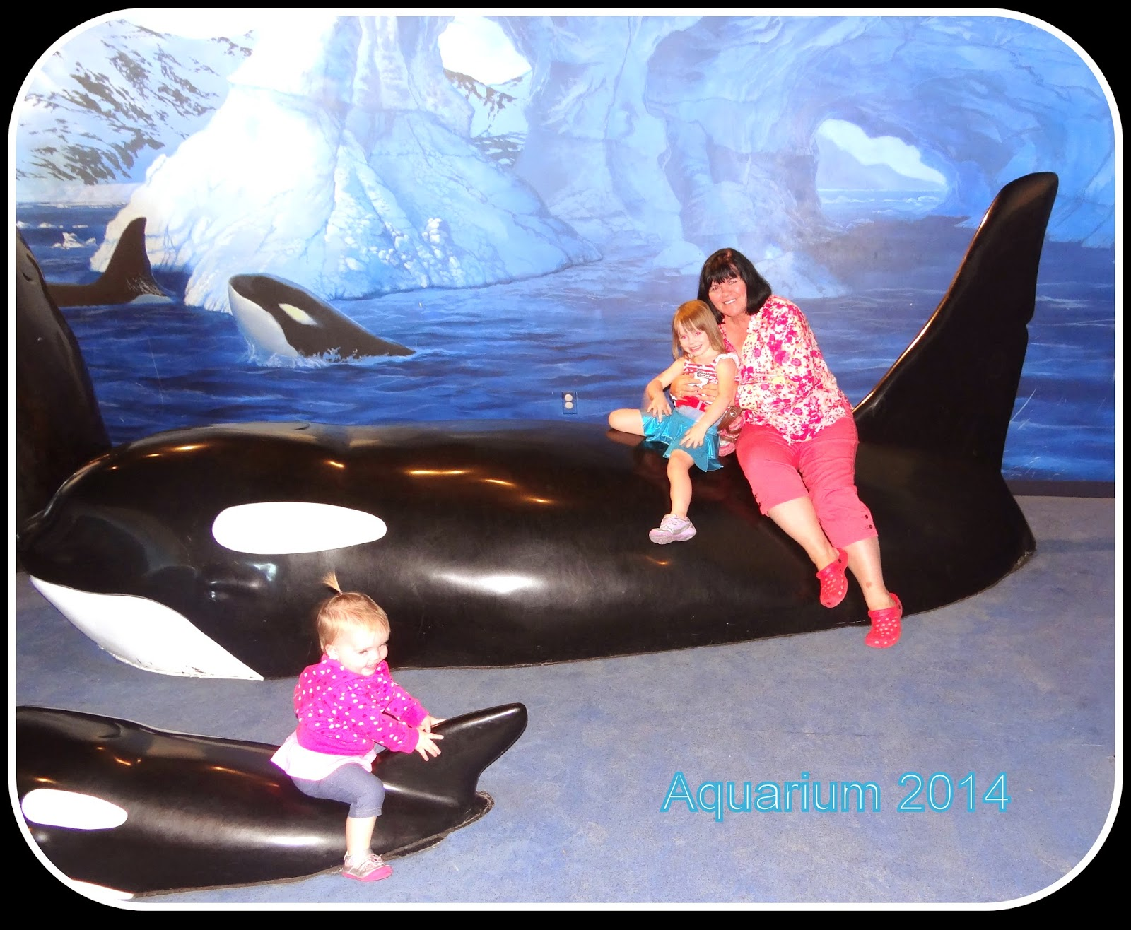 Pattie 39 S Place The Living Planet Aquarium Trip In Sandy Utah