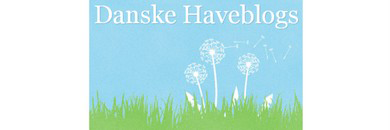 DK haveblogs