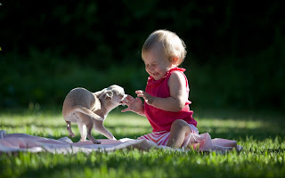 Cute Baby playing with pet image