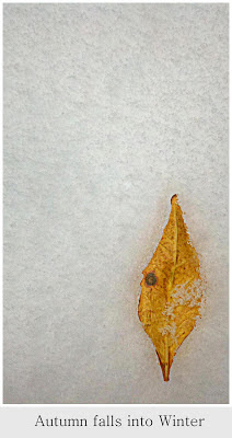 autumn on snow