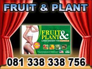 pelangsing badan fruit plant toko bali pusat vimax