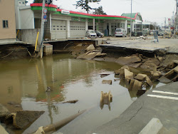 Damage from Tsunami