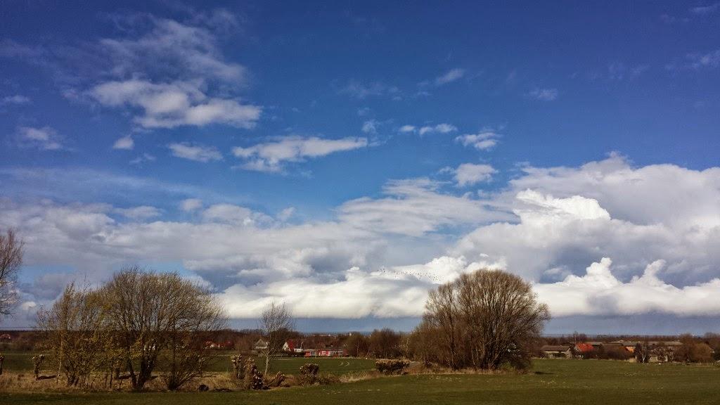 Wolken wie Hasen