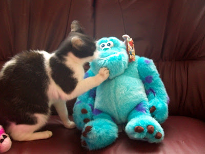 Monsters Inc., Sulley, Plush, Cat