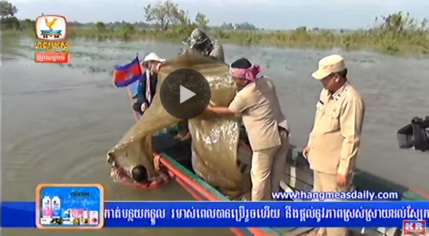 Daily news kh khmer news hang meas daily news hdtv on 03 september