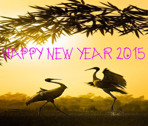 Happy New Year Punjabi sms Greeting Cards 2016