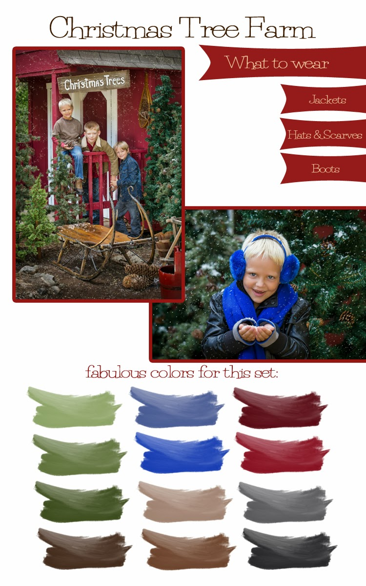 The artistry of elizabeth homan 2013 christmas clothing - Christmas tree color schemes ...
